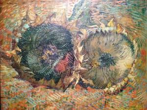 Van Gogh MG_4499