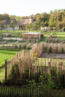 potager-jardin-07-227x340-royaumont-abbaye-fondation