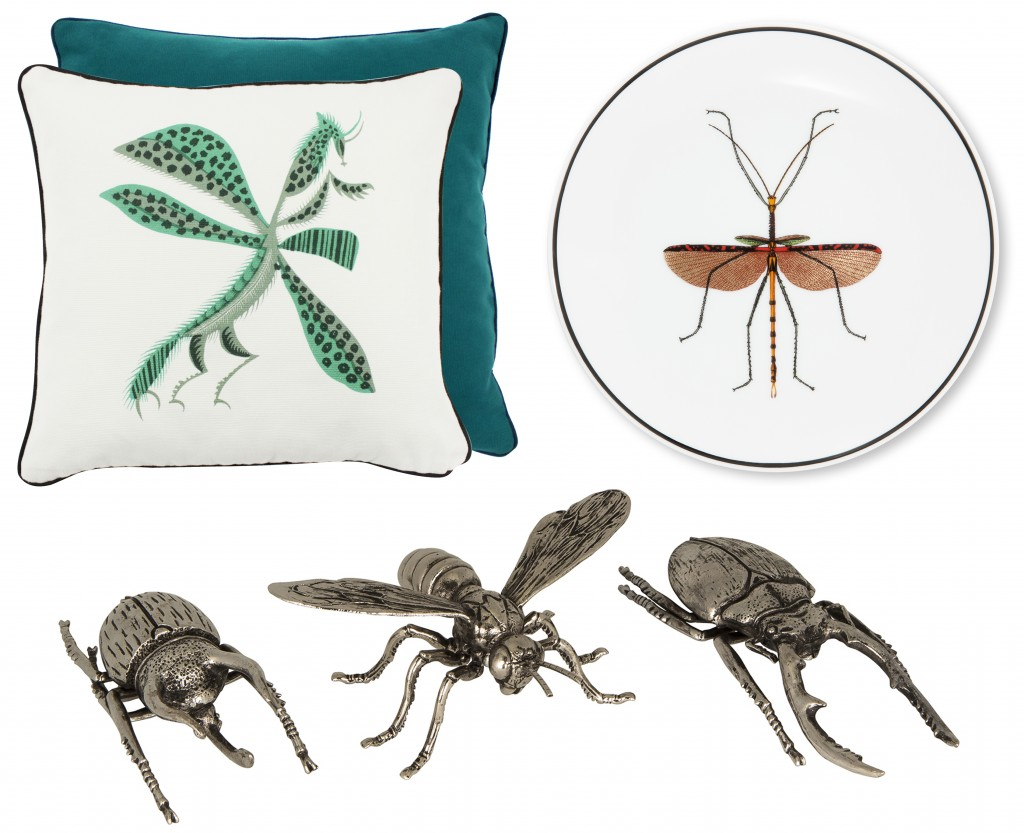 Montage Insectes