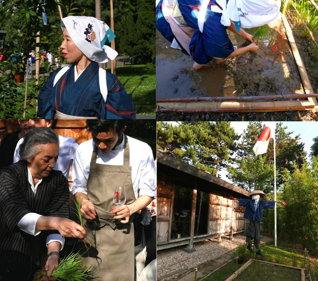 mika yamada maisondekiso4